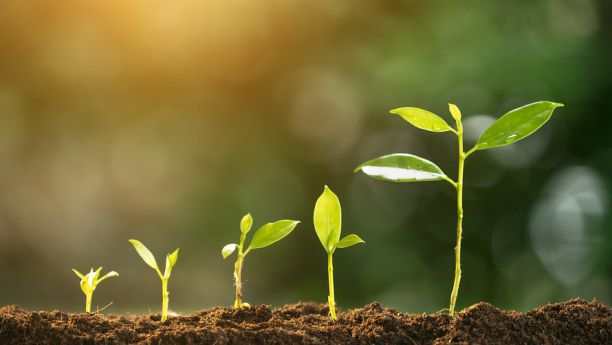 tikėjimas turi augti